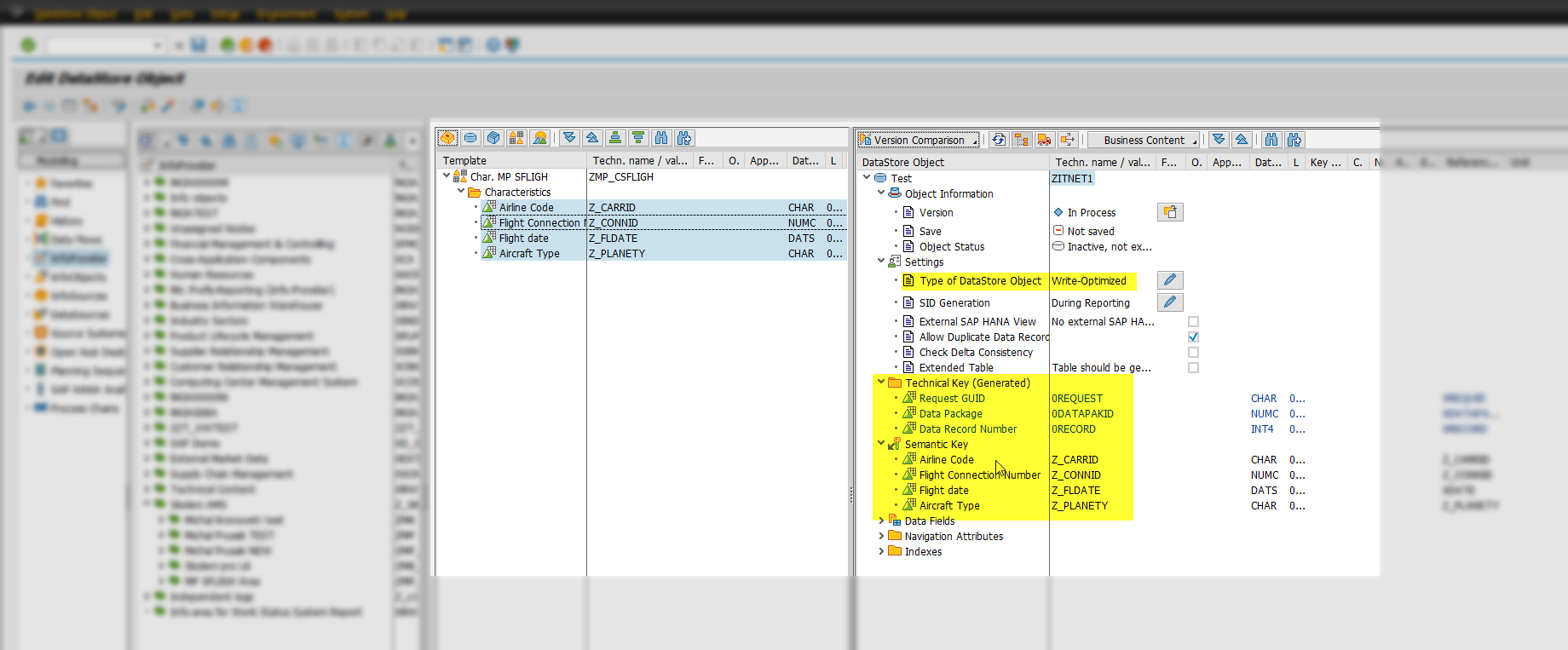 Lekce 5 - Data Store Object (DSO) v SAP